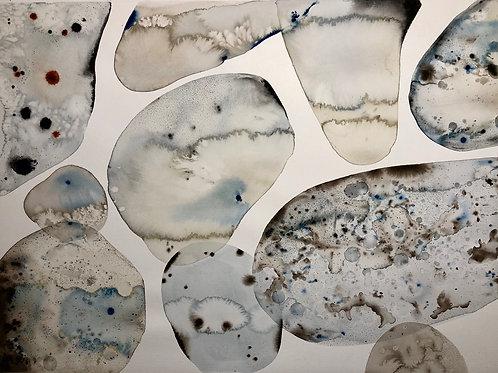 MicroOrganism 22 X 30