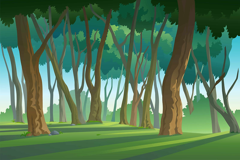 forest-01.jpg