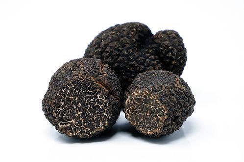 Trufa negra congelada T. Melanosporum 500 gr