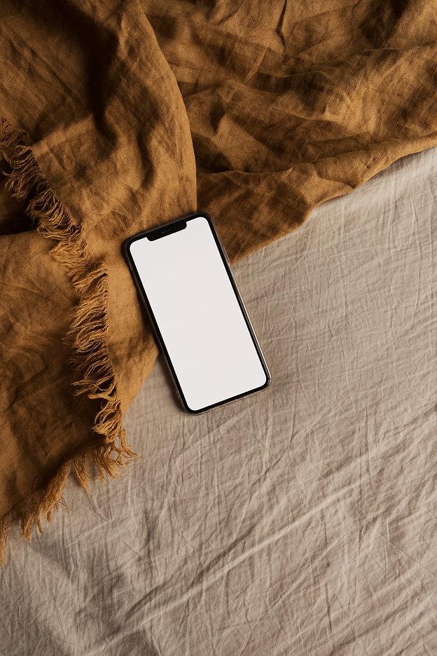 Blank screen smart phone on ginger blank