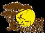 nature ninja logo.png
