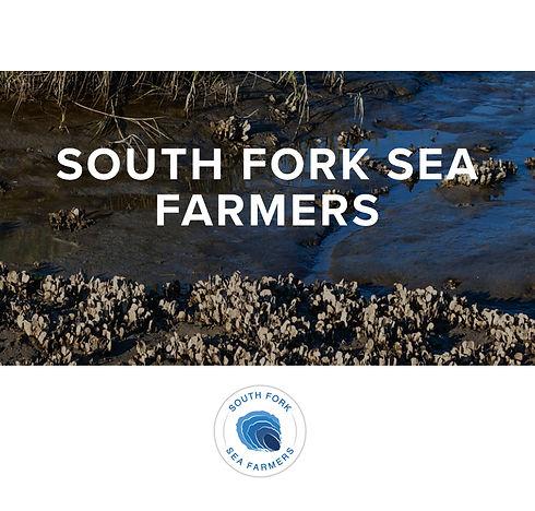 south fork sea farmers.jpg
