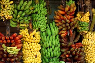 10 +2 reasons to eat bananas