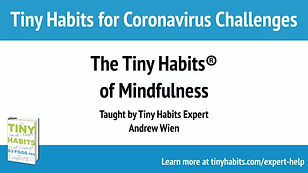 Tiny Habits of Mindfulness_Andrew Wien.j