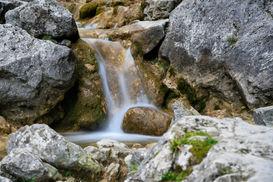 The little wet rock