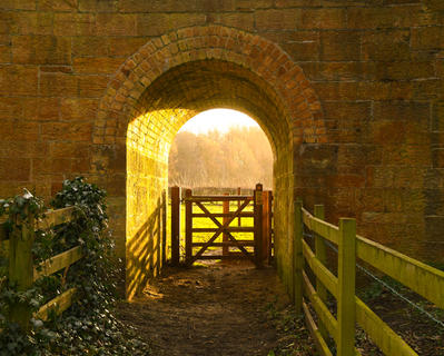 Early morning light through the arch