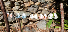 Erificio porcelain earrings