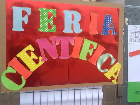 FERIA CIENTÍFICA 2019