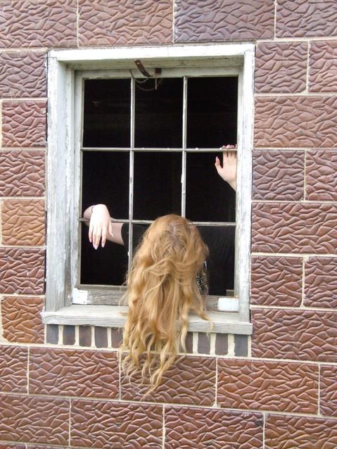 Seen Through a Window Series