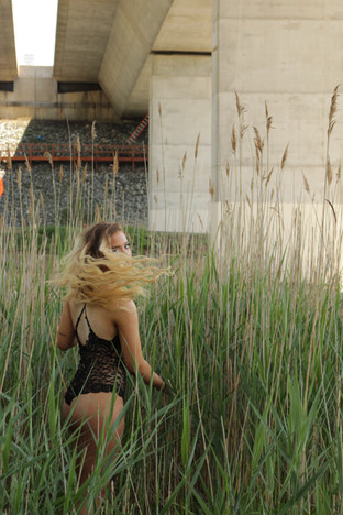 Into the Tall Grass Series