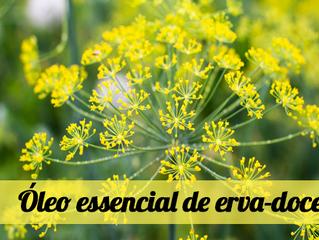 Óleo essencial de erva-doce: conheça e saiba como usar em casa