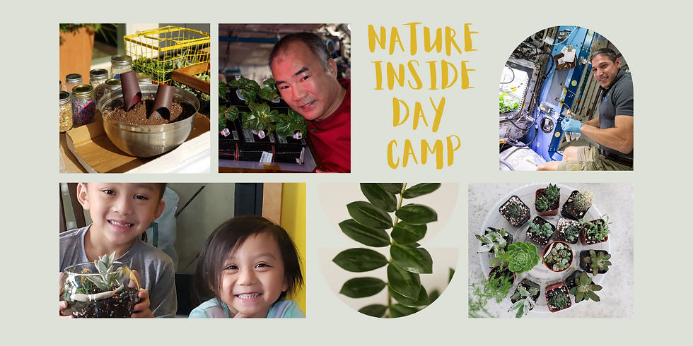 Nature Inside Day Camp - Session 3