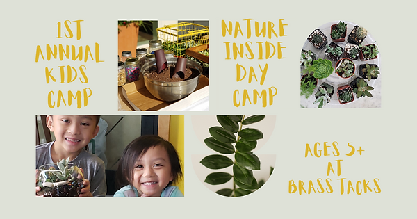 nature inside day camp-2.png