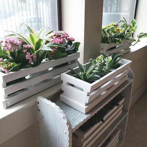 Plant Bouquet Planters