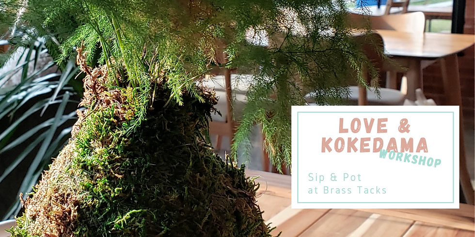 Sip & Pot at Brass Tacks ・ Love + Kokedama