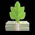money2.png