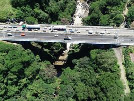UNOPS en Costa Rica compensa corta de árboles en proyectos constructivos