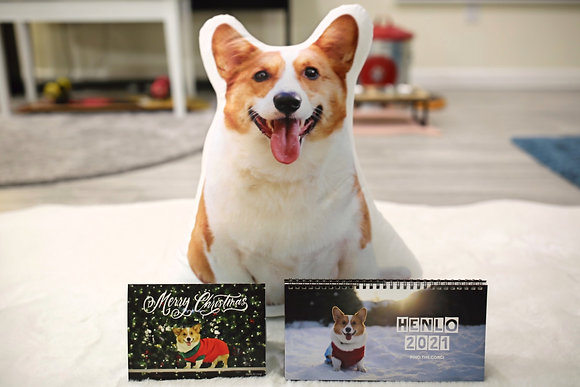 Holiday Gift Bundle! - Pino Pillow +Calendar + Post Card
