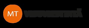 visuviestinta_logo.png