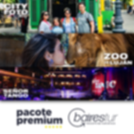pacote-premium-feed.png