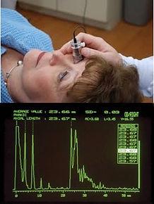 biometry.jpg