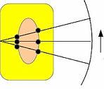 b-scan 1.jpg