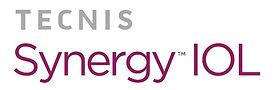 synergy_logo.jpg