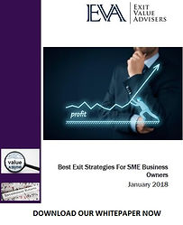Best Exit Strategies Whitepaper v2.jpg