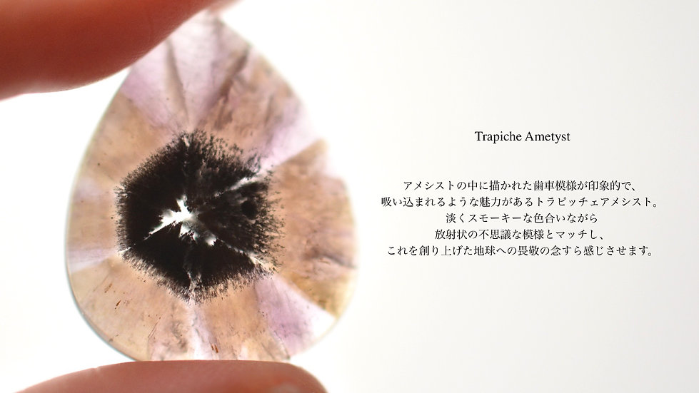 DSC_7859 (2).jpg
