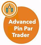 Pin Button.jpg