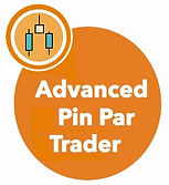 Pin Button.jpg