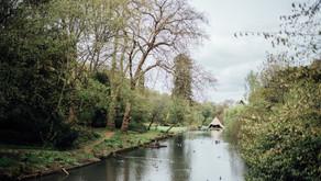 Inspiration - Swan Lake Styled Shoot