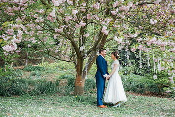 Bride and Groom, Blossom Tree, Busbridge Lakes, Surrey.