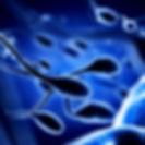 Sperm Donasyonu Kıbrıs