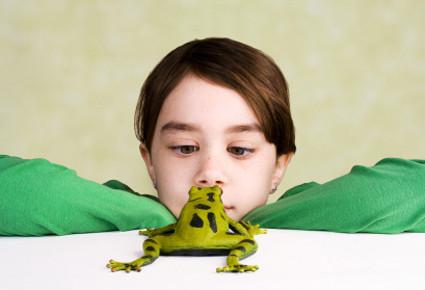 kid_frog_1.jpg