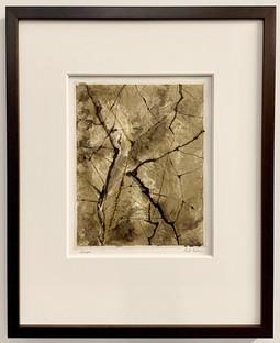 Synapse  -Framed-