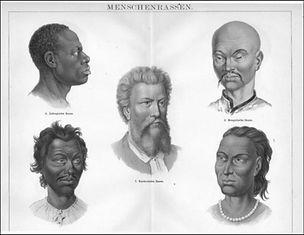 Figure 11. The 5 Ethnicities of