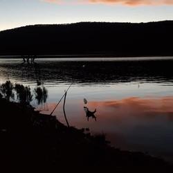 Robert Turnsek - Lake Eucumbene.JPG