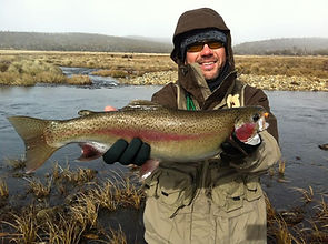 Geoff Bramann - Rainbow Trout at Lake Eu