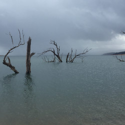 Rain in Yens Bay - Lake Eucumbene.JPG