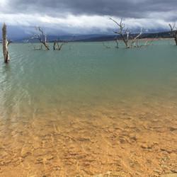 Lake Eucumbene - green Yens Bay.JPG