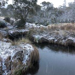 Snow at Gang Gang Creek (Lake Eucumbene)