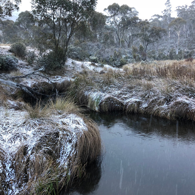 Snow at Gang Gang Creek (Lake Eucumbene)