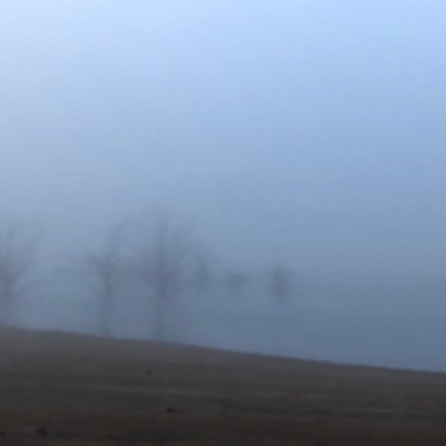 Foggy morning on Lake Eucumbene.JPG