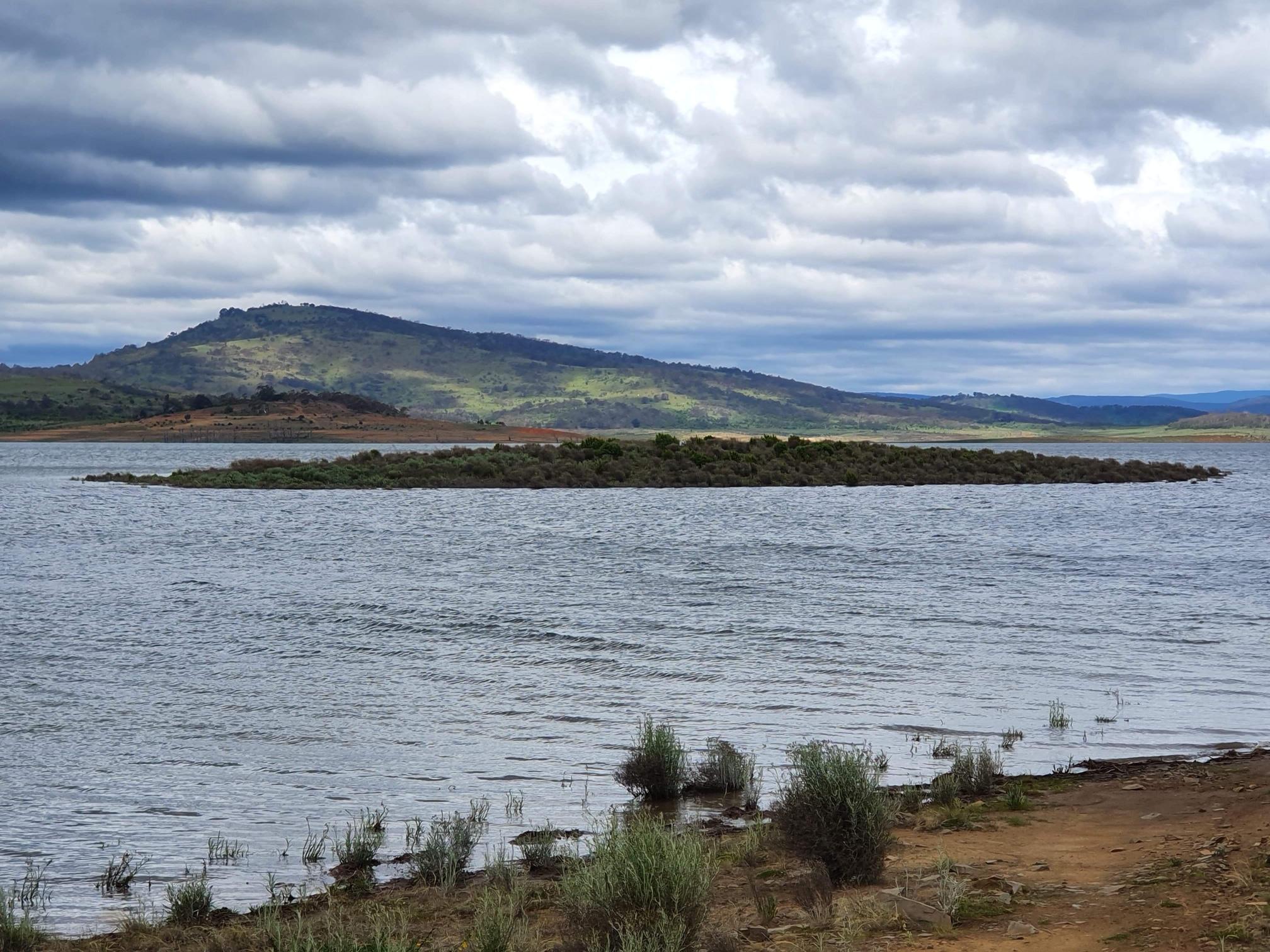 Trout Island - Lake Eucumbene