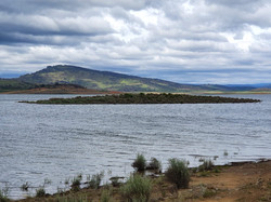Trout Island - Lake Eucumbene