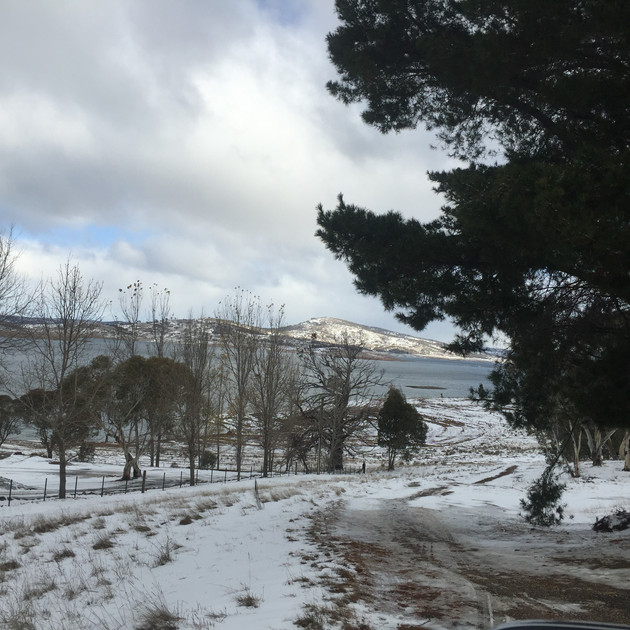 Old Adaminaby snow - 13 July 2016.JPG