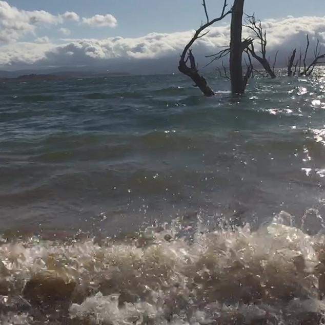 Video - Surfs up - Lake Eucumbene.MOV
