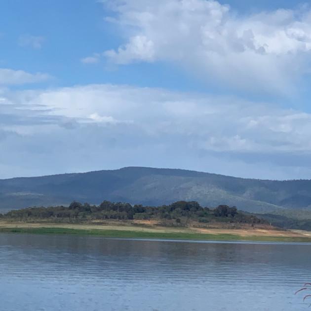 looking towards Grace Lea Island (Lake E