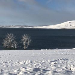 Old Adaminaby in snow - August 2018.JPG